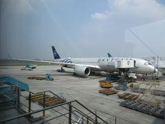 隣のスポットには、「スカイチーム」の特別塗装を纏ったベトナム航空のA350-900XWBが駐機していました。