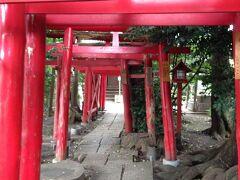 中野原稲荷神社 の真っ赤な鳥居です。 10m以上鳥居参道が続いています。