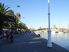 お天気が良いので海沿いを歩いていても気持ちいい!