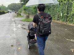 出発時には雨が降ってなかったのに、雨が途中で降り始めました。