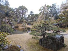 梅の季節は長浜盆梅展が開催されています。