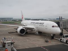 コロナによる自粛で飛行機に乗るのも2月末以来。 こんなに飛行機に乗っていないのって久々かも。  まずはJAL103で大阪・伊丹へ飛びます。