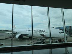 伊丹空港の手荷物受取所からの景色が好きです。