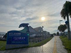 港の北側にはジンベイザメ『ユウユウ』の飼育展示で有名な鹿児島水族館があります。 当然この時間は営業時間外。 放流前のサイズで見てみたいですね。