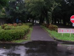 小金井公園入口。 ファミマでお昼ご飯を調達。