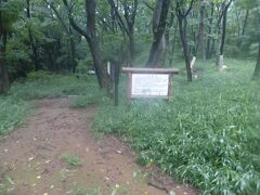 小沢城跡 平安時代のお城だそうです。