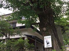 有明山神社入り口にある手打ちそば「くるまや」さんで!  https://s.tabelog.com/nagano/A2005/A200501/20007662/