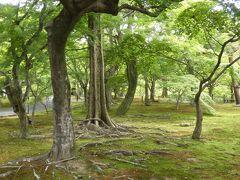 お次は東福寺です。 新緑が深まった緑の庭を抜けていきます。 ここは観光客が誰もいません。 わたし一人きりの東福寺です。最高!!!