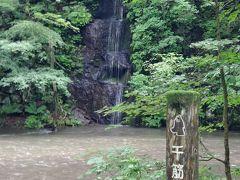 「せんすじの滝」はきれいに見えました。川の水が少し澄んできました。