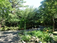 JR茅ヶ崎駅の南口から、歩いて10分弱で高砂緑地へ。