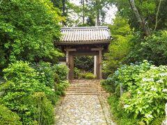 龍潭寺の山門。ちょうど紫陽花の季節であった。