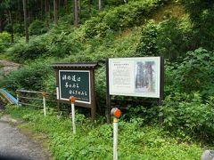 慈光寺(五泉)への道は杉並木