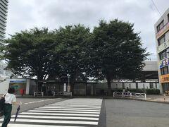 志村けんの木は1976年に志村けんさんの広報活動のお礼に植樹された欅の3本の木です。 木の付近には何もないので来た時は分からなかった。