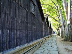 朝の散歩は ホテル近くの山居倉庫へ。 明治26年に建てられた米の保管倉庫。  NHK朝の連続テレビ小説 「おしん」のロケ地にもなった。 ・・・なってたか?   キオクにないけど、 黒壁にケヤキの緑が美しい。