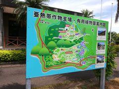 次に亜熱帯植物園に行ってきました ジャガランタ祭りなるものをやっていて 母がだいすきなので行ってみよう!