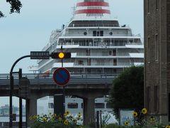 """【2020/07/27】  もう7月末だというのに 向日葵も咲いたというのに このどんよりとした空は あんまりでしょう~(-""""-)  この日も傘が手放せませんでした。  後方に見えるのは客船飛鳥Ⅱ。 客船ダイヤモンドプリンセス号の一件以来 ずっと大さん橋に係留されたままです。"""