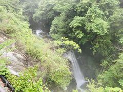 新緑に流れる太閤の滝 マイナスイオンたっぷりでした