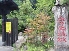 【血の池地獄(国指定名勝)】 日本最古の赤い天然地獄です