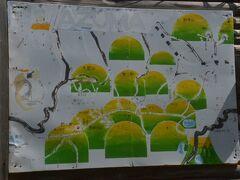 さて、そろそろ姥湯温泉のお迎えの時間です。 あっという間に3時間が過ぎました。 写真は駅前にあった吾妻連邦の案内図です。  【長くなったので、姥湯温泉・桝形屋さんは後編にします】 ⇒続きは https://4travel.jp/travelogue/11637930 を。 峠の力餅の確実な買い方も紹介しています。                        (前編おわり)