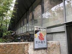 阪急電車で、桂駅乗り換えで嵐山へ  何年ぶりだろう ものすごい観光客のイメージにうんざりしていて 自然と遠のいていた  福田美術館「伊藤若冲展」 チケットはネット予約 時間指定 写真可