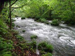 渓流館の約4Km先付近からは、国道は川沿いを走り、その先約300m走ると右側に第一の名所「三乱の流れ」に到着。いくつもの岩で作られた、三つの流れが作る多彩な渓流美が人気のようです。また岩に根を張る苔も良かったです。
