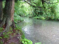 休憩所から川に下りてゆくと川が浅く、岩もないせいか流れは緩やかです。そのためか石ヶ戸自体には景勝地はありません。個人的にはここも景勝地です。