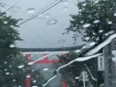 こちらの写真だと大雨状態が分かると思います 場所は鹿児島神宮 一度も立ち寄ったことはありません・・・