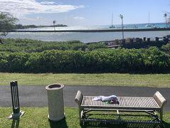 翌朝  ホテルの喫煙エリアです。(嫌煙家の方、失礼)  絶景ポイントにベンチまで置いてくれてます( ̄▽ ̄)  ハワイって喫煙に関して厳しいのに、何故か絶景ポイントが喫煙エリアになってることが多い。