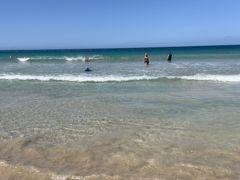 朝からハプナビーチへ!  うん、綺麗です。  オアフ島より遥かに透明度上でした。