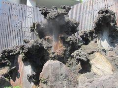 熱海七湯巡り。  「大湯間歇泉」 吹き出ていました。