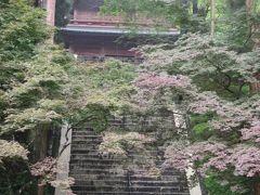 7/27 レンタカーで比叡山にドライブ。延暦寺にも寄り道です。