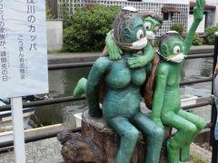 旧加茂川沿いにはカッパがいっぱい住んでるのね