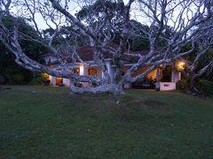 「ルヌガンガ」(写真)で感じた 庭から始まっている建築と似ている・・・ と。