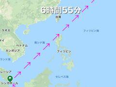 SQ941デンパサール12:10→シンガポール14:55        ~~乗り継ぎ2時間10分~~ SQ630シンガポール17:05→ 羽田翌日1:00