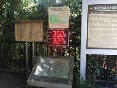 駅から成城石井の前を通って、1、2分で等々力渓谷へ降りる遊歩道の入口につきました。 街の温度が35℃に対し、等々力渓谷は32.7℃と気温が下がりますが、約33℃って避暑地といえるのでしょうか…