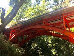 あっという間にゴルフ橋に戻ってきました。 等々力渓谷は、確かに都会にいることを忘れる自然が広がっていました。 今日は暑かったですが、春や秋にまた来たいと思いました。
