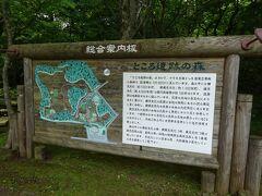 30分ほどでホテルの辺りまで戻ってきました。ホテルの道路を挟んで向かいにあるところ遺跡の森に行ってみました