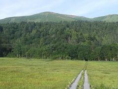 至仏山に向かいます ここの草原に子熊が(・□・;)