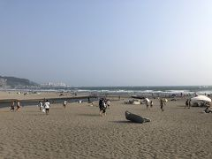 海に到着! この日はみんな足元が海仕様ではなかったので、砂浜には行かずに海を眺めてました