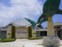 美ら海水族館。 バス専用の駐車場からだと、15分近く歩きました。 ツアーに代金は含まれていないので、見たい方だけ。