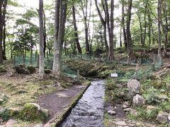 ここは八ヶ岳に降った雪解け水が湧き出ている珍しい場所です。小さな森の中にあります。この湧水のおかげで開拓が進みました。  この土地には地主さんがいてかっては私有地でしたが、なんと市へ寄付をされて今は市が管理しています。そのことを記した記念碑が建てられています。