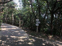 日米修好記念館の先、遊歩道へと進みます。 木陰は、心地よい涼風です。