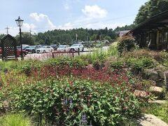 食事を済ませて、萌木の村に行きます。ガーデンがとても美しい。いろんな草花が植えられています。