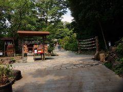 10:00 葛原岡神社に到着