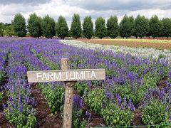 最初に行こうと思っていた、富良野のラベンダー畑にやってきた。青い池のすぐ近くかと思っていたが、結構な距離があった。 さすがに観光農園だけあって、ラベンダーはもちろん、マリーゴールドなどほかの花も今が盛りのように咲き誇っていた。 あたり一面、ラベンダーの香りに包まれて幸せな気分になる。