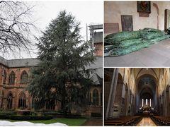 脇の入口から大聖堂に入りました。何度目かの大聖堂。 中庭の回廊の端に、モミの木と思われるものがたくさん。どこに飾るんだろう?