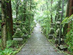 この日の天気は雨。家の出た時には小降りになっていたのですが、目的地の「大雄山最乗寺」に到着すると急に土砂降り(;´▽`A`` まぁ、寺院は雨も似合いますがね(笑)昨年も訪れたこちら、すっかり気に入っております♪  昨年の日記:https://4travel.jp/travelogue/11504622  木々と苔と…緑色がきれいです。雨で生き生きとしていました。