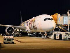 今日の飛行機はこちら! JA873J号。就航してから1年半しかたっていない新しい飛行機で、JAL嵐ハワイJETと称した特別塗装機です。 ぶっちゃけ真の男はジャニーズではなく石原プロダクションだと思っている派なので特別塗装には特に興味なし(笑)