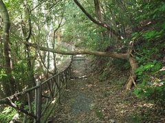 長崎空港からホテルに向かう途中、おしどりの池がキレイだったので、行ってみることにした。 「遊歩道」という看板を見て行ってみたけど、全く池は見えず。