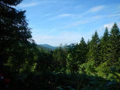 登りきって少し下ったところ・・沼山峠展望台に到着。